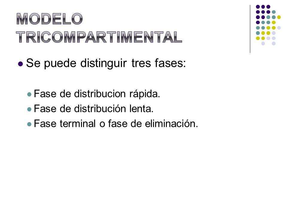 Se puede distinguir tres fases: Fase de distribucion rápida. Fase de distribución lenta. Fase terminal o fase de eliminación.