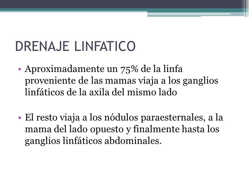 DRENAJE LINFATICO Aproximadamente un 75% de la linfa proveniente de las mamas viaja a los ganglios linfáticos de la axila del mismo lado El resto viaj