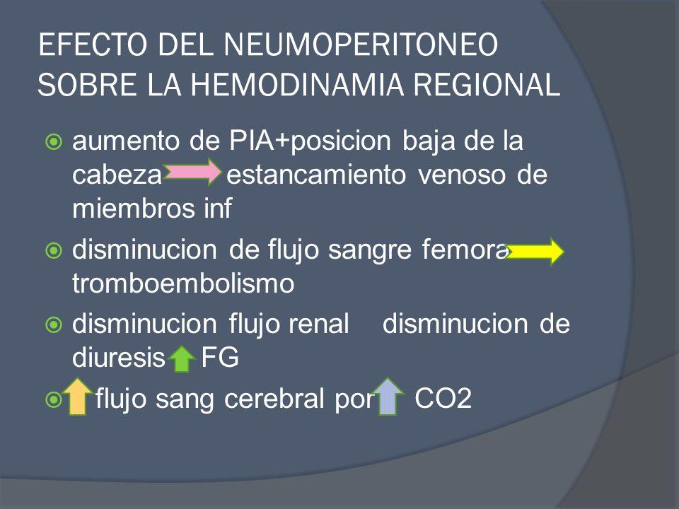 EFECTO DEL NEUMOPERITONEO SOBRE LA HEMODINAMIA REGIONAL aumento de PIA+posicion baja de la cabeza estancamiento venoso de miembros inf disminucion de