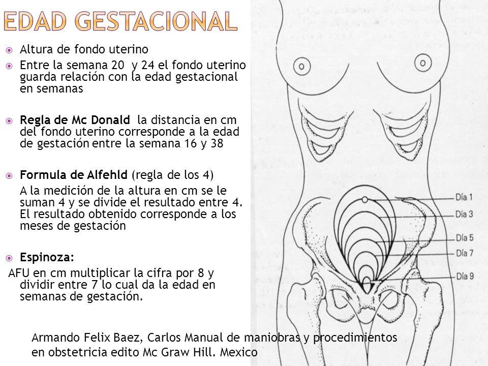 Altura de fondo uterino Entre la semana 20 y 24 el fondo uterino guarda relación con la edad gestacional en semanas Regla de Mc Donald la distancia en