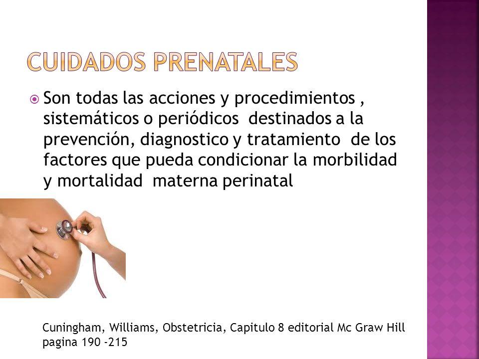 La OMS establece que las mujeres embarazadas deben asistir como mínimo a 5 consultas de atención prenatal World Health Organization Standars For maternal and neonatal Care2006