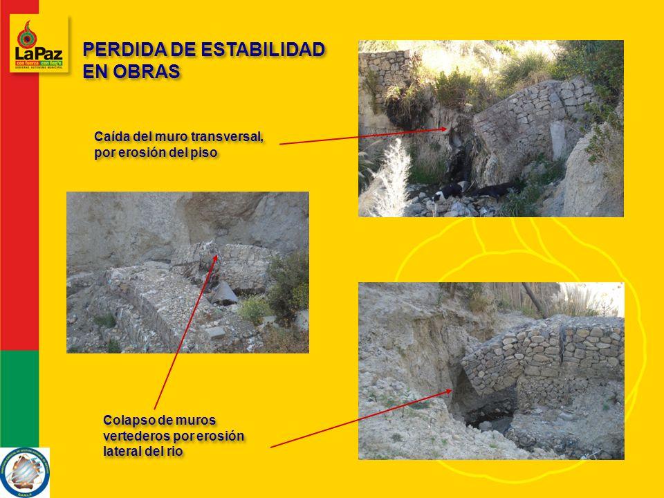 PERDIDA DE ESTABILIDAD EN OBRAS Caída del muro transversal, por erosión del piso Colapso de muros vertederos por erosión lateral del rio