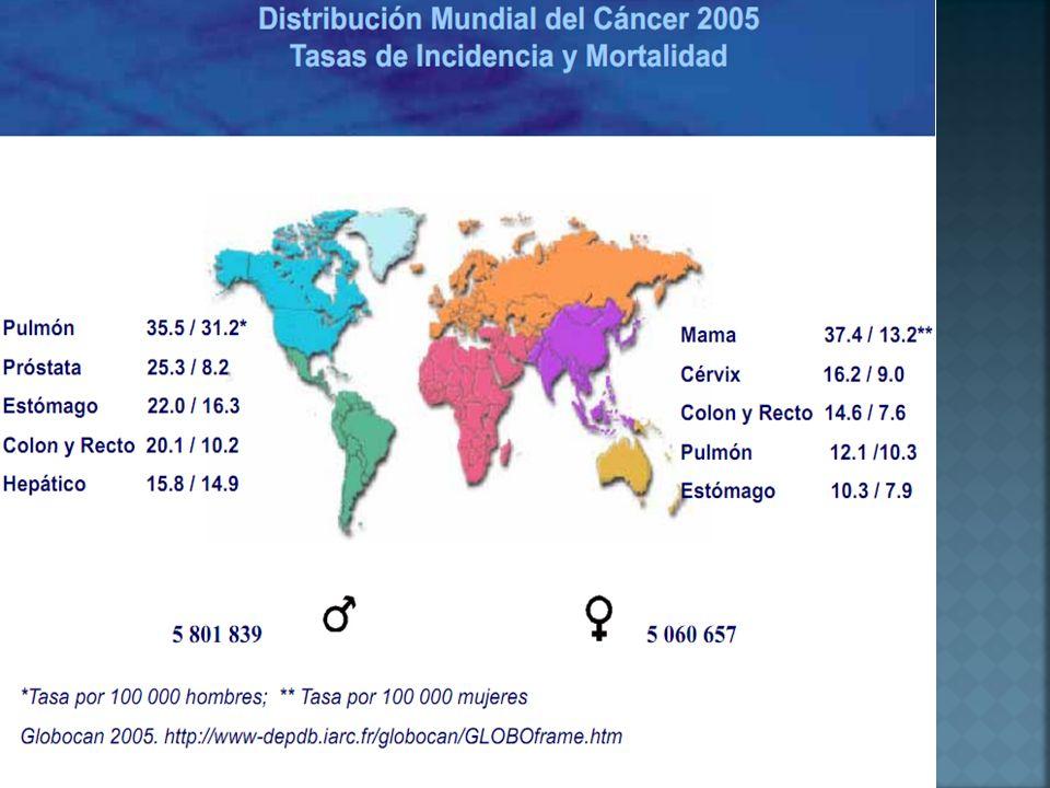 En México, 23 personas serán diagnosticadas diariamente con Cáncer de Colon y Recto este año.