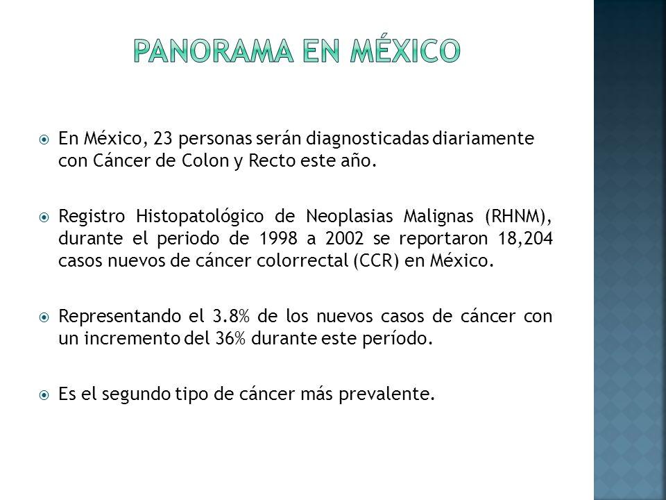 En México, 23 personas serán diagnosticadas diariamente con Cáncer de Colon y Recto este año. Registro Histopatológico de Neoplasias Malignas (RHNM),