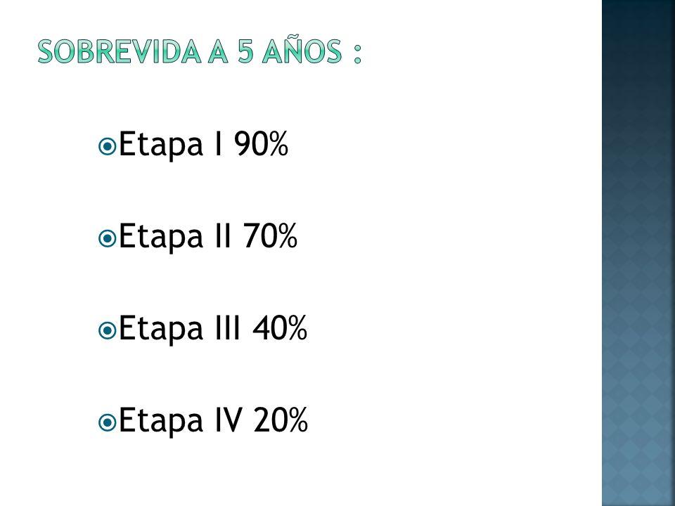 Etapa I 90% Etapa II 70% Etapa III 40% Etapa IV 20%