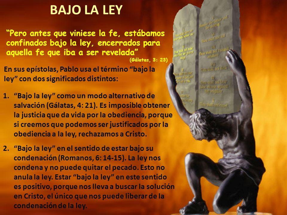 La palabra traducida como ayo (paidagogós), definía a un esclavo que tenía autoridad sobre los hijos del amo.