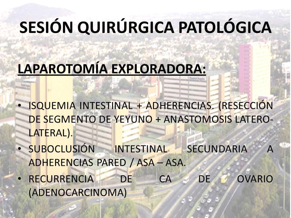 LAPAROTOMÍA EXPLORADORA: ISQUEMIA INTESTINAL + ADHERENCIAS. (RESECCIÓN DE SEGMENTO DE YEYUNO + ANASTOMOSIS LATERO- LATERAL). SUBOCLUSIÓN INTESTINAL SE