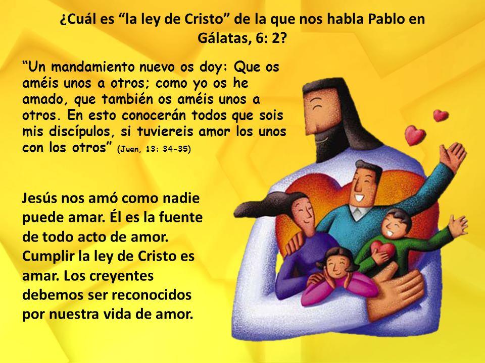 ¿Cuál es la ley de Cristo de la que nos habla Pablo en Gálatas, 6: 2? Un mandamiento nuevo os doy: Que os améis unos a otros; como yo os he amado, que