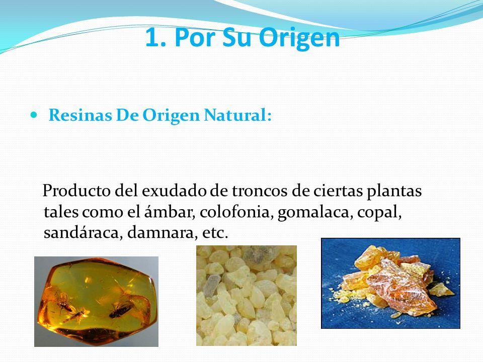 Resinas Acrílicas Aparatos de prótesis Bases de dentaduras totales y parciales Dientes artificiales Placas