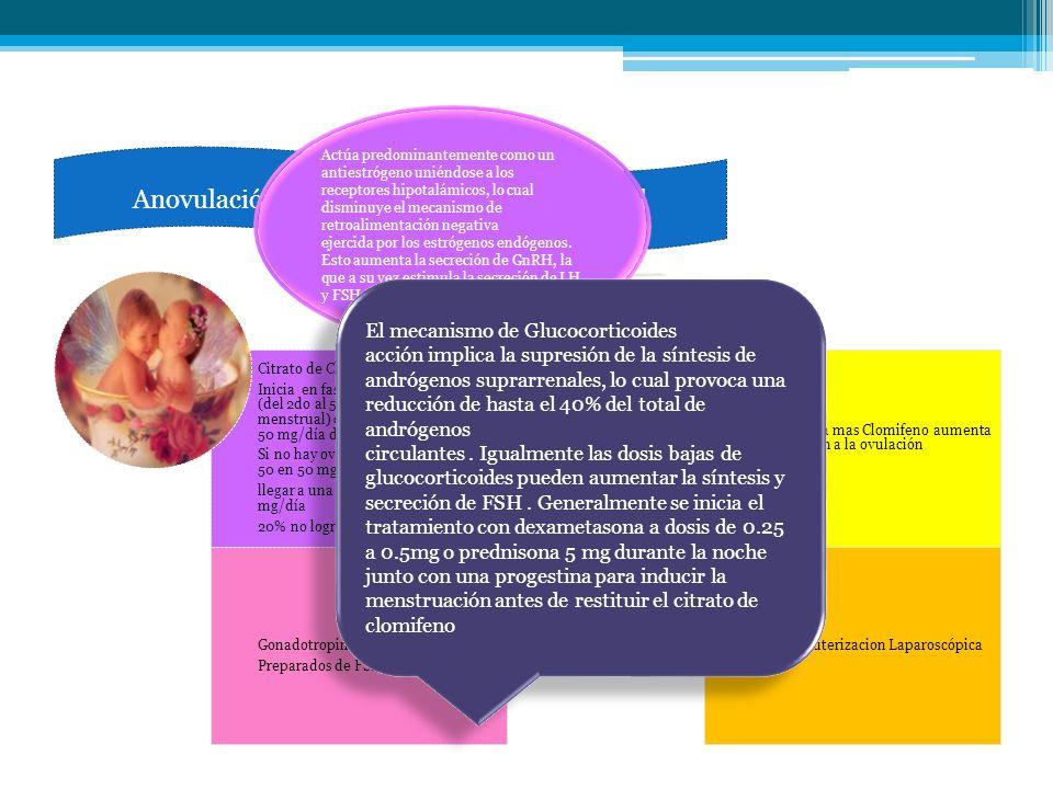 ct Citrato de Clomifeno Inicia en fase proliferativa precoz (del 2do al 5to día del ciclo menstrual) con la administración de 50 mg/día durante 5 días
