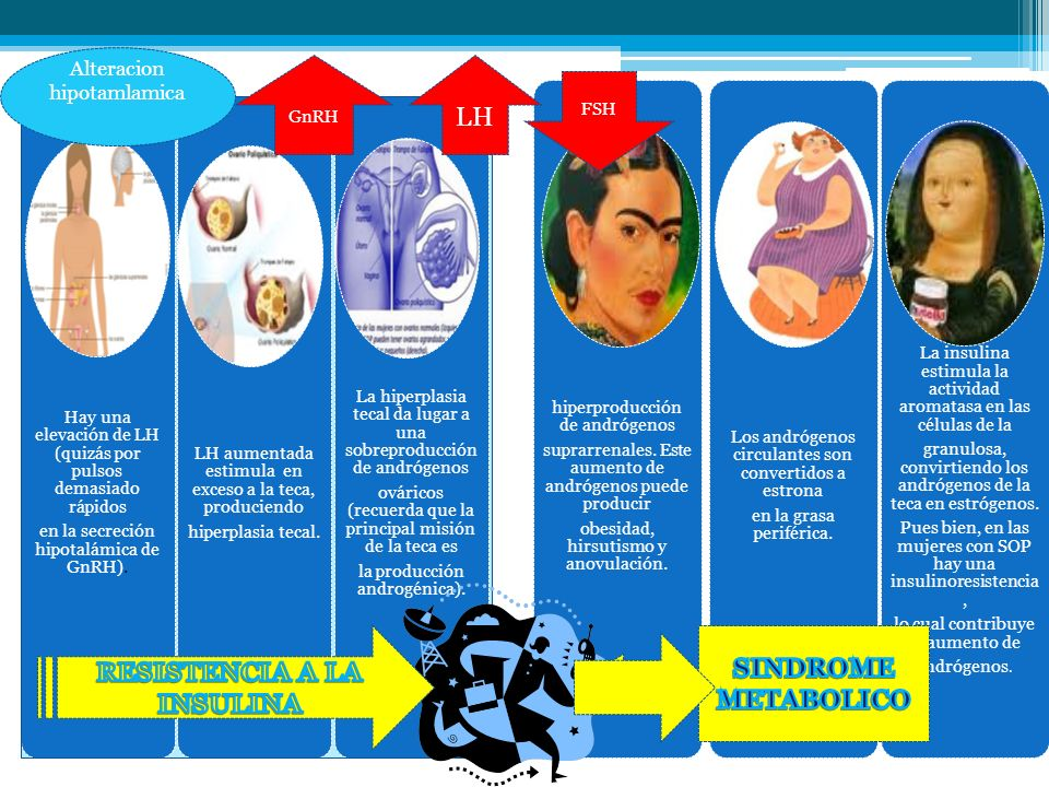 RESISTENCIA INSULINICA HIPERINSULINEMIA COMPENSATORIA HIPERA NDROGE NISMO: Hirsutism o Acné Hiperestimulación Ovárica SHBG, Testosterona Libre ANOVUL ACION: Irregulari dad Menstrua l Infertilida d ANOVUL ACION: Irregular i dad Andrógen os Adrenales Enzima Ovárica P450c 17-A DIABETES MELLITUS TIPO 2 CLDL oxidado Hipercoa gulabilida d DISLIPI DEMIA OBESIDAD GENETICA Obesidad RI SOP AMBIENTE Dieta Sedentarismo Hábitos Cardiopatía Isquémica Mortalidad