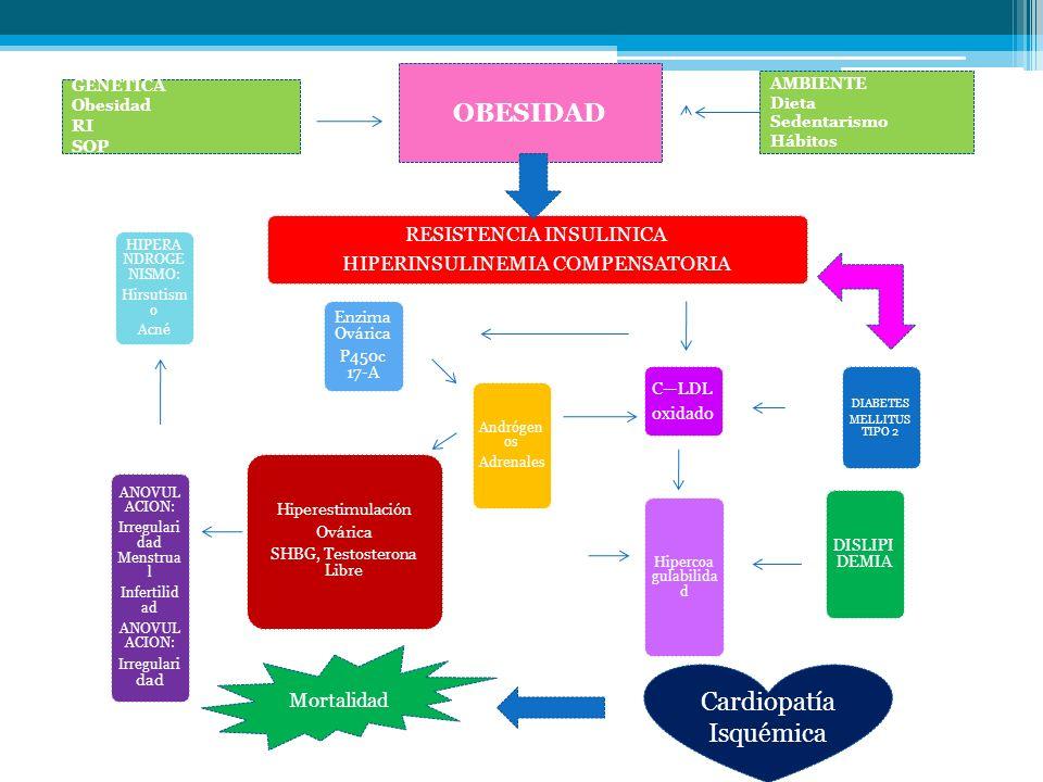 RESISTENCIA INSULINICA HIPERINSULINEMIA COMPENSATORIA HIPERA NDROGE NISMO: Hirsutism o Acné Hiperestimulación Ovárica SHBG, Testosterona Libre ANOVUL