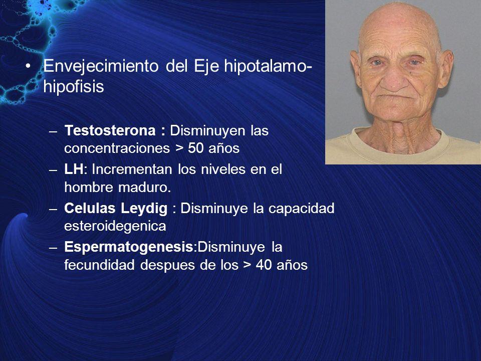 Envejecimiento del Eje hipotalamo- hipofisis –Testosterona : Disminuyen las concentraciones > 50 años –LH: Incrementan los niveles en el hombre maduro