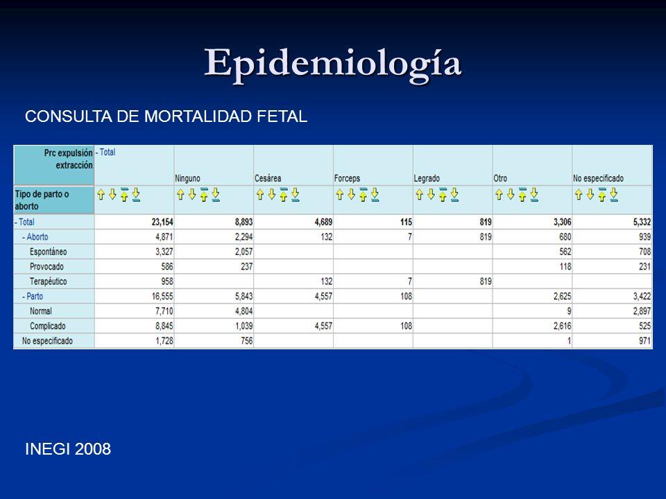 Epidemiología INEGI 2008 CONSULTA DE MORTALIDAD FETAL