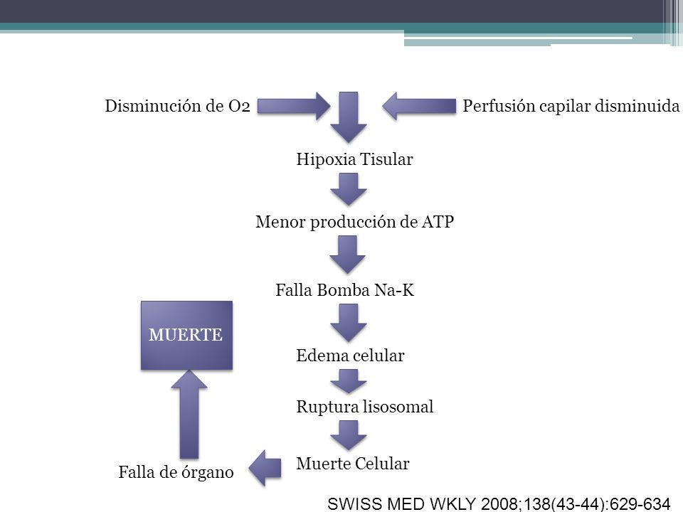 Disminución de O2Perfusión capilar disminuida Hipoxia Tisular Menor producción de ATP Falla Bomba Na-K Edema celular Ruptura lisosomal Muerte Celular