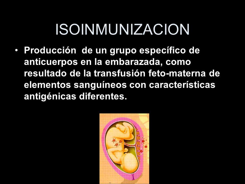 ISOINMUNIZACION Producción de un grupo específico de anticuerpos en la embarazada, como resultado de la transfusión feto-materna de elementos sanguíne