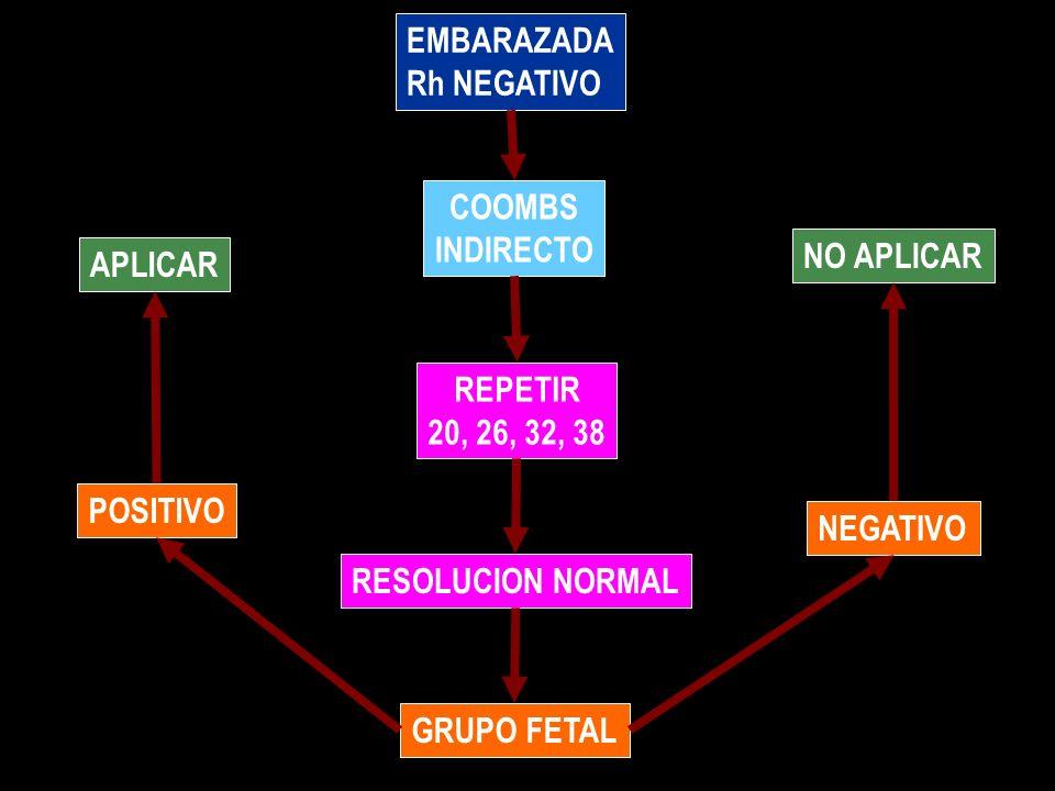 EMBARAZADA Rh NEGATIVO COOMBS INDIRECTO REPETIR 20, 26, 32, 38 RESOLUCION NORMAL GRUPO FETAL POSITIVO APLICAR NEGATIVO NO APLICAR