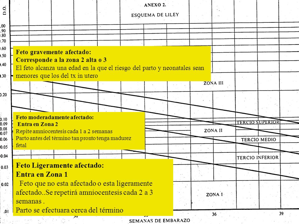 Feto Ligeramente afectado: Entra en Zona 1 Feto que no esta afectado o esta ligeramente afectado..Se repetirá amniocentesis cada 2 a 3 semanas. Parto
