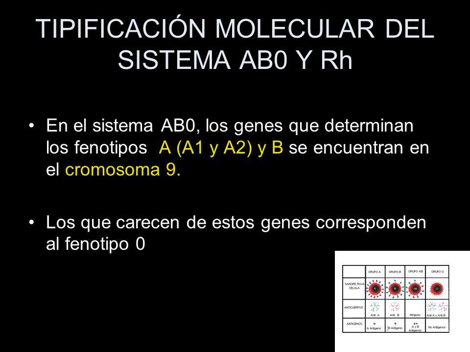 TIPIFICACIÓN MOLECULAR DEL SISTEMA AB0 Y Rh En el sistema AB0, los genes que determinan los fenotipos A (A1 y A2) y B se encuentran en el cromosoma 9.