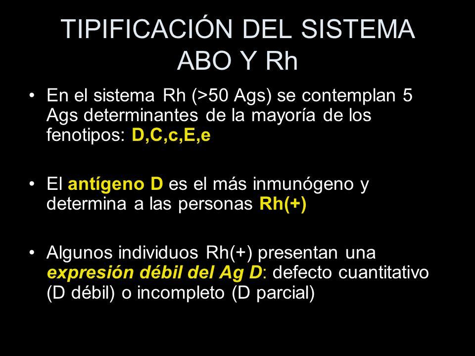 TIPIFICACIÓN DEL SISTEMA ABO Y Rh En el sistema Rh (>50 Ags) se contemplan 5 Ags determinantes de la mayoría de los fenotipos: D,C,c,E,e El antígeno D