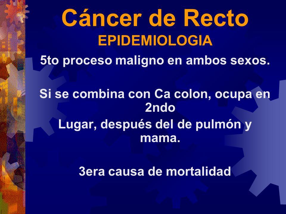 Cáncer de Recto EPIDEMIOLOGIA 5to proceso maligno en ambos sexos. Si se combina con Ca colon, ocupa en 2ndo Lugar, después del de pulmón y mama. 3era