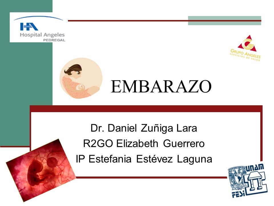 EMBARAZO Dr. Daniel Zuñiga Lara R2GO Elizabeth Guerrero IP Estefania Estévez Laguna
