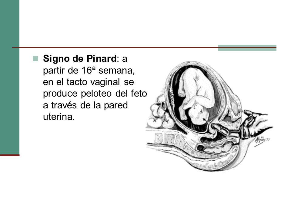 Signo de Pinard: a partir de 16ª semana, en el tacto vaginal se produce peloteo del feto a través de la pared uterina.
