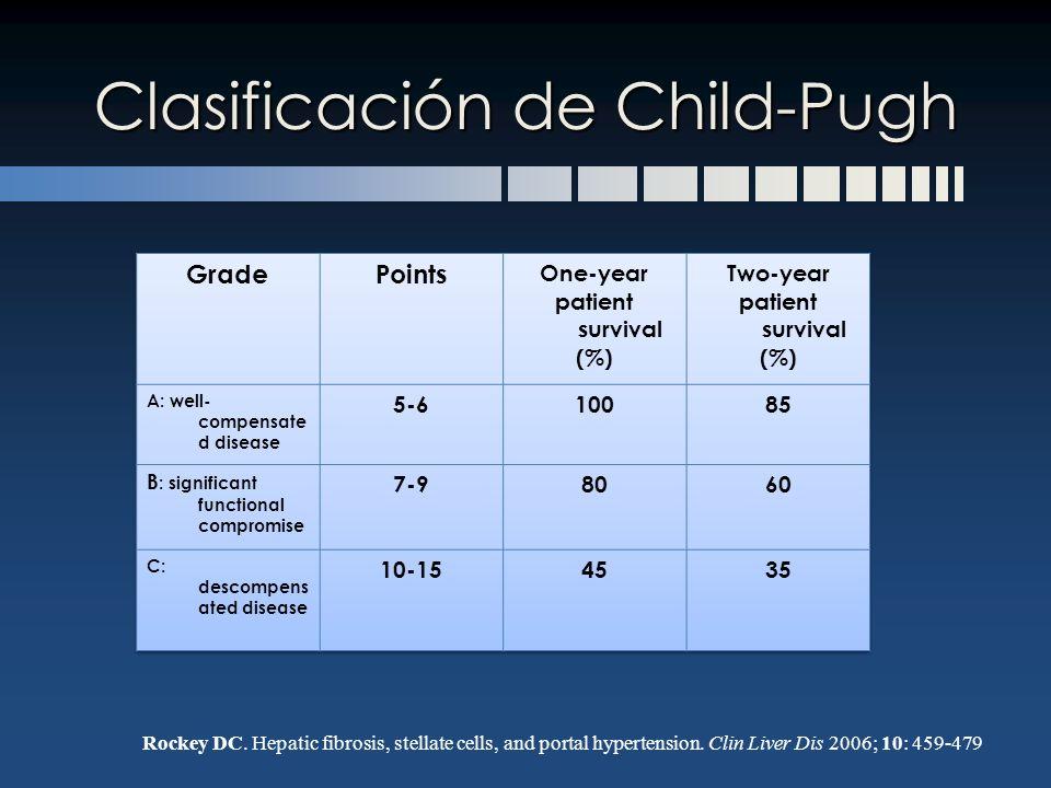 Clasificación de Child-Pugh Rockey DC. Hepatic fibrosis, stellate cells, and portal hypertension. Clin Liver Dis 2006; 10: 459-479