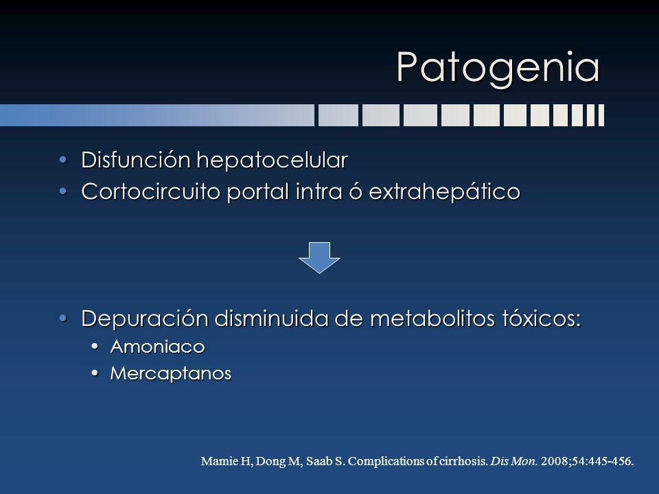 Patogenia Disfunción hepatocelularDisfunción hepatocelular Cortocircuito portal intra ó extrahepáticoCortocircuito portal intra ó extrahepático Depura