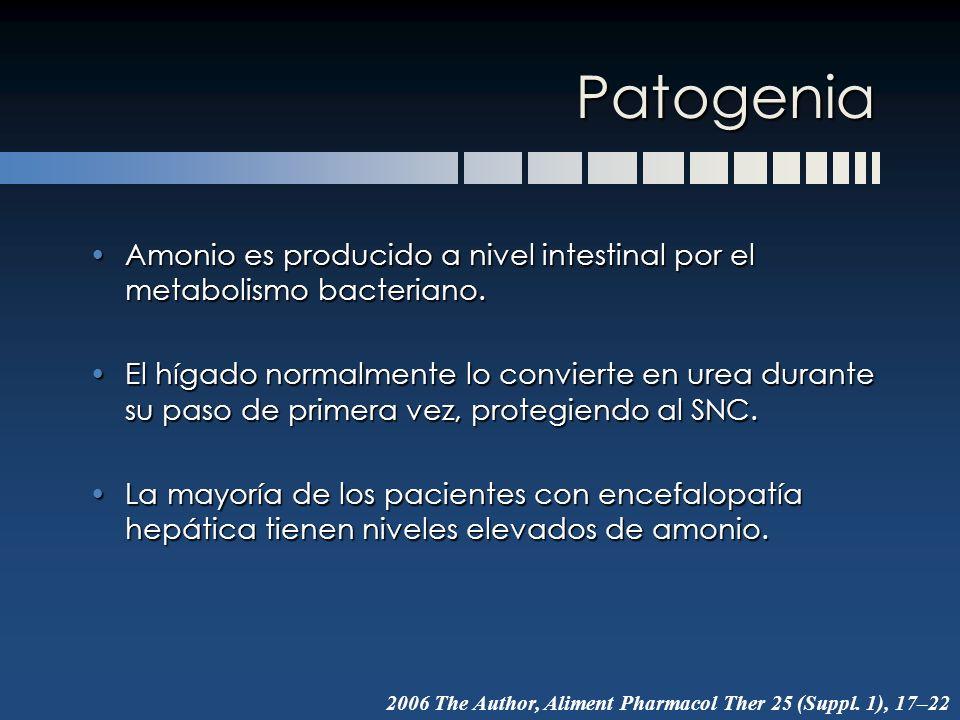 Patogenia Amonio es producido a nivel intestinal por el metabolismo bacteriano.Amonio es producido a nivel intestinal por el metabolismo bacteriano. E