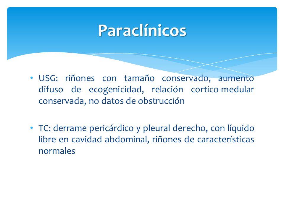 Paraclínicos USG: riñones con tamaño conservado, aumento difuso de ecogenicidad, relación cortico-medular conservada, no datos de obstrucción TC: derr