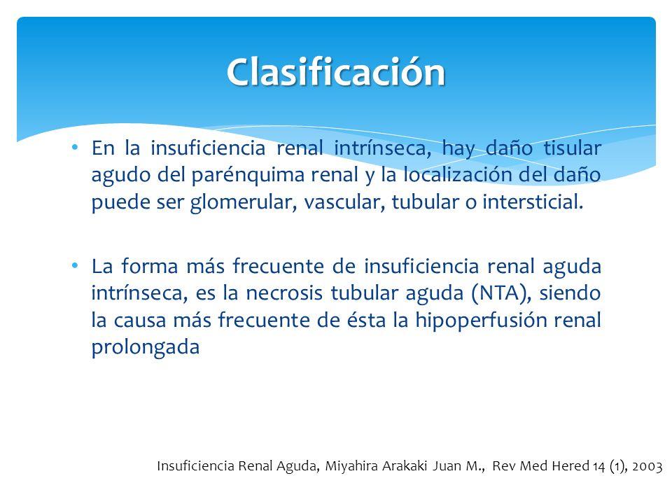 Clasificación En la insuficiencia renal intrínseca, hay daño tisular agudo del parénquima renal y la localización del daño puede ser glomerular, vascu