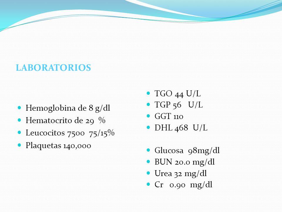 LABORATORIOS Hemoglobina de 8 g/dl Hematocrito de 29 % Leucocitos 7500 75/15% Plaquetas 140,000 TGO 44 U/L TGP 56 U/L GGT 110 DHL 468 U/L Glucosa 98mg