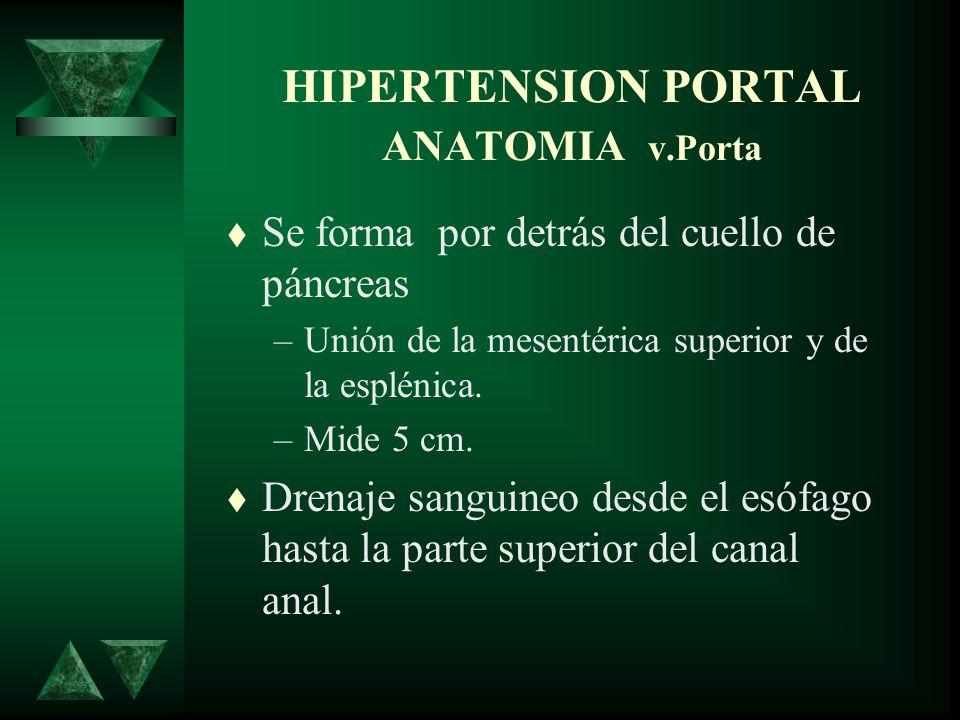 HIPERTENSION PORTAL ANATOMIA v.Porta Se forma por detrás del cuello de páncreas –Unión de la mesentérica superior y de la esplénica. –Mide 5 cm. Drena