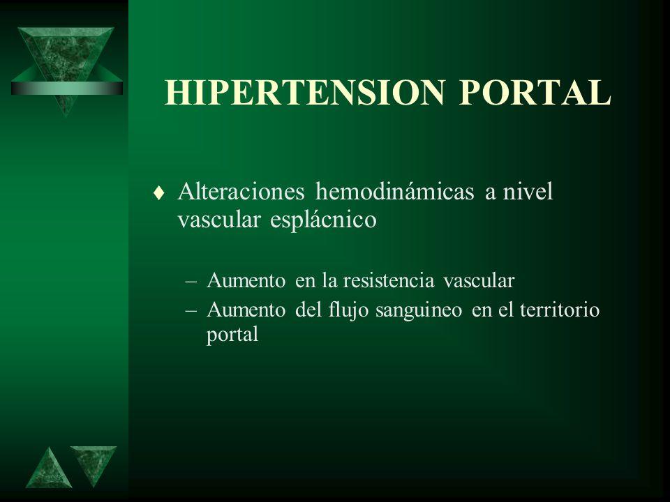 HIPERTENSION PORTAL Alteraciones hemodinámicas a nivel vascular esplácnico –Aumento en la resistencia vascular –Aumento del flujo sanguineo en el terr
