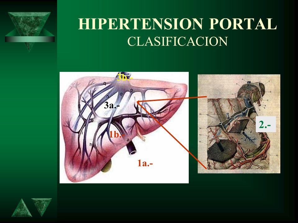 HIPERTENSION PORTAL CLASIFICACION 1a.- 1b.- 2.- 3a.- 3b.-
