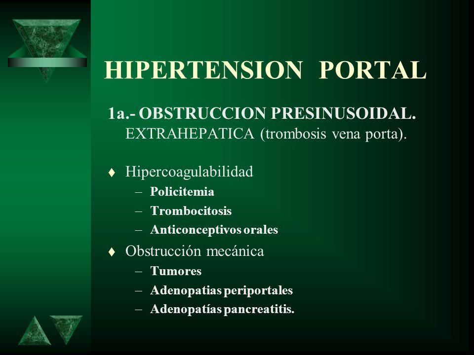 HIPERTENSION PORTAL 1a.- OBSTRUCCION PRESINUSOIDAL. EXTRAHEPATICA (trombosis vena porta). Hipercoagulabilidad –Policitemia –Trombocitosis –Anticoncept