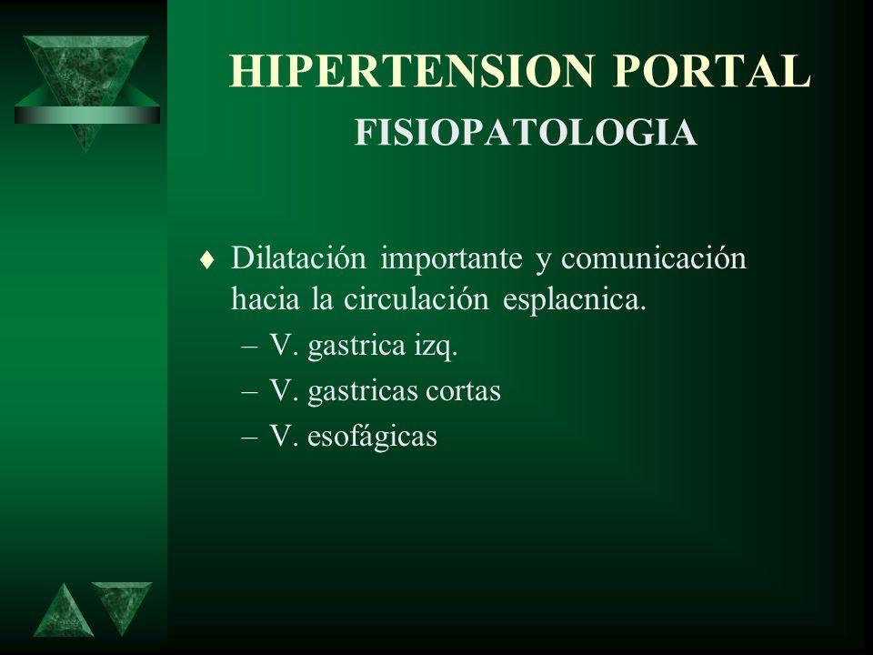 HIPERTENSION PORTAL FISIOPATOLOGIA Dilatación importante y comunicación hacia la circulación esplacnica. –V. gastrica izq. –V. gastricas cortas –V. es