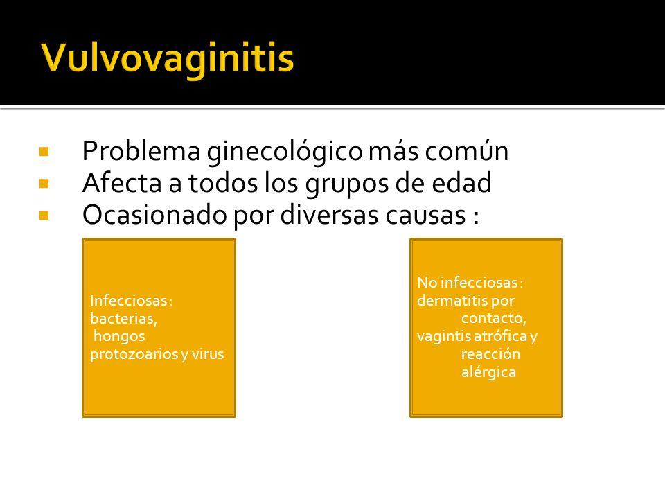 Problema ginecológico más común Afecta a todos los grupos de edad Ocasionado por diversas causas : Infecciosas : bacterias, hongos protozoarios y viru