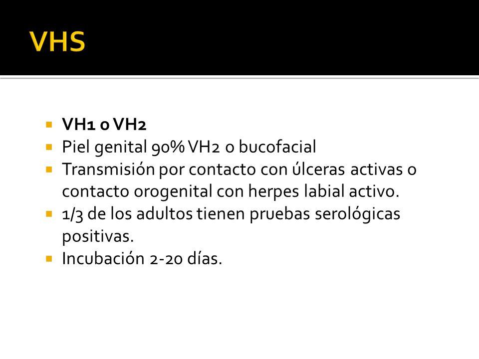 VH1 o VH2 Piel genital 90% VH2 o bucofacial Transmisión por contacto con úlceras activas o contacto orogenital con herpes labial activo. 1/3 de los ad