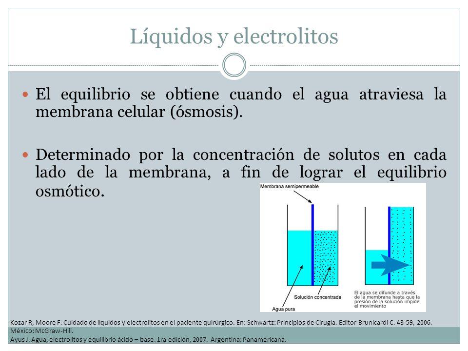 Líquidos y electrolitos El equilibrio se obtiene cuando el agua atraviesa la membrana celular (ósmosis). Determinado por la concentración de solutos e