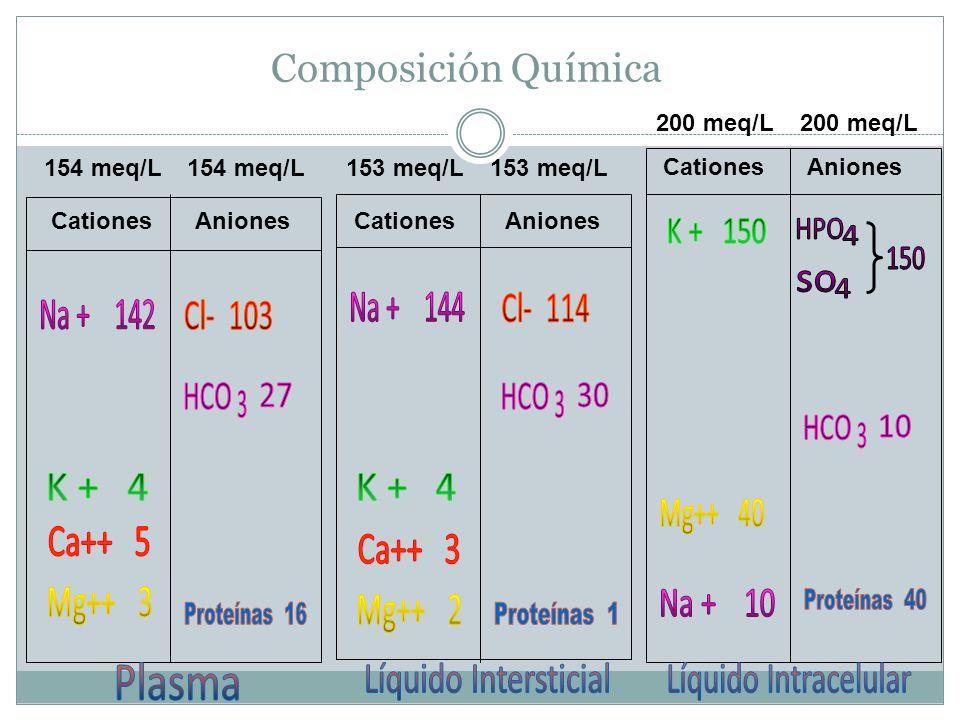 Composición Química CationesAnionesCationes Aniones 154 meq/L 153 meq/L 200 meq/L