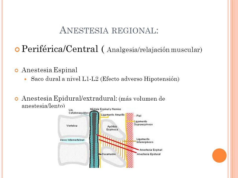 A NESTESIA REGIONAL : Periférica/Central ( Analgesia/relajación muscular) Anestesia Espinal Saco dural a nivel L1-L2 (Efecto adverso Hipotensión) Anes