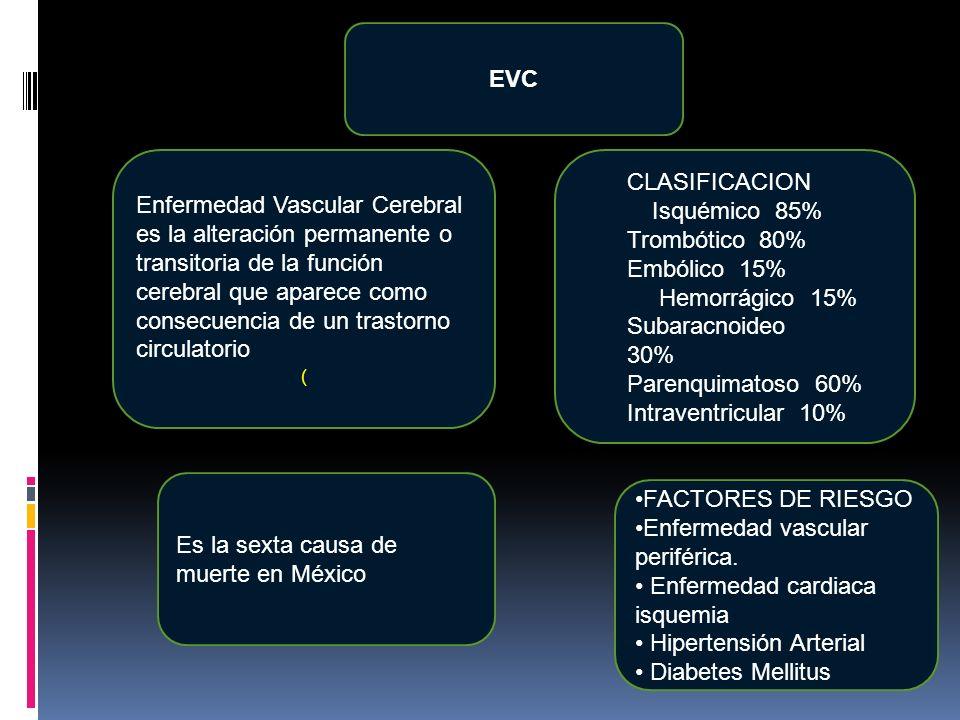 EVC Es la sexta causa de muerte en México CLASIFICACION Isquémico 85% Trombótico 80% Embólico 15% Hemorrágico 15% Subaracnoideo 30% Parenquimatoso 60%