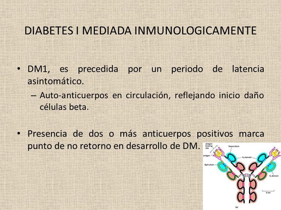 DIABETES I MEDIADA INMUNOLOGICAMENTE DM1, es precedida por un periodo de latencia asintomático. – Auto-anticuerpos en circulación, reflejando inicio d