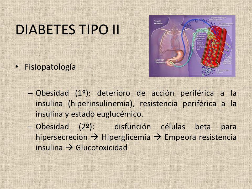 DIABETES TIPO II Fisiopatología – Obesidad (1º): deterioro de acción periférica a la insulina (hiperinsulinemia), resistencia periférica a la insulina