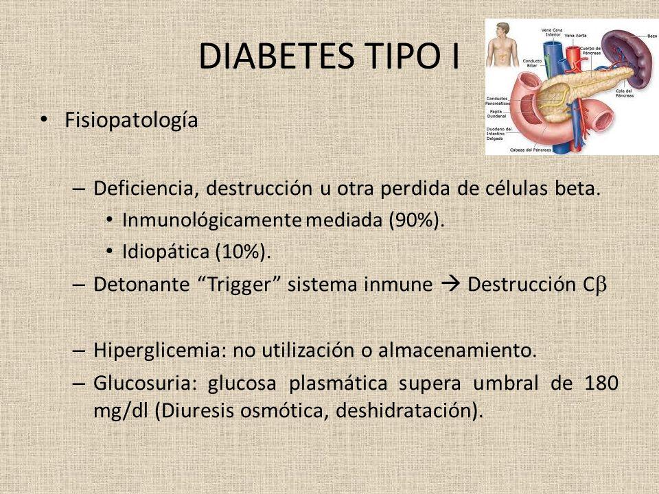 DIABETES TIPO I Fisiopatología – Deficiencia, destrucción u otra perdida de células beta. Inmunológicamente mediada (90%). Idiopática (10%). – Detonan