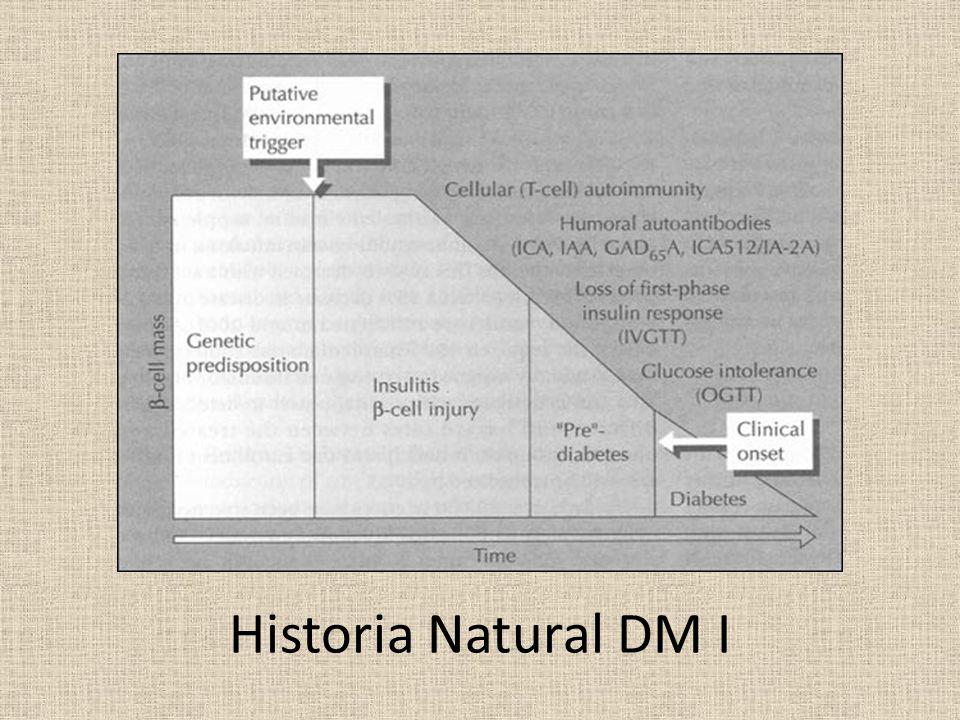 Historia Natural DM I
