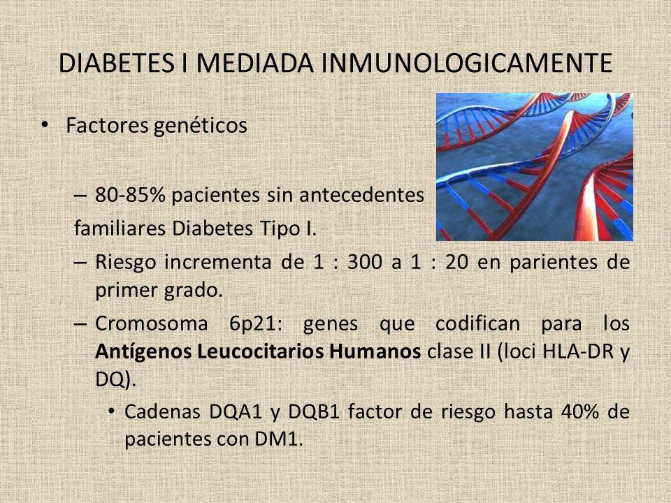 DIABETES I MEDIADA INMUNOLOGICAMENTE Factores genéticos – 80-85% pacientes sin antecedentes familiares Diabetes Tipo I. – Riesgo incrementa de 1 : 300