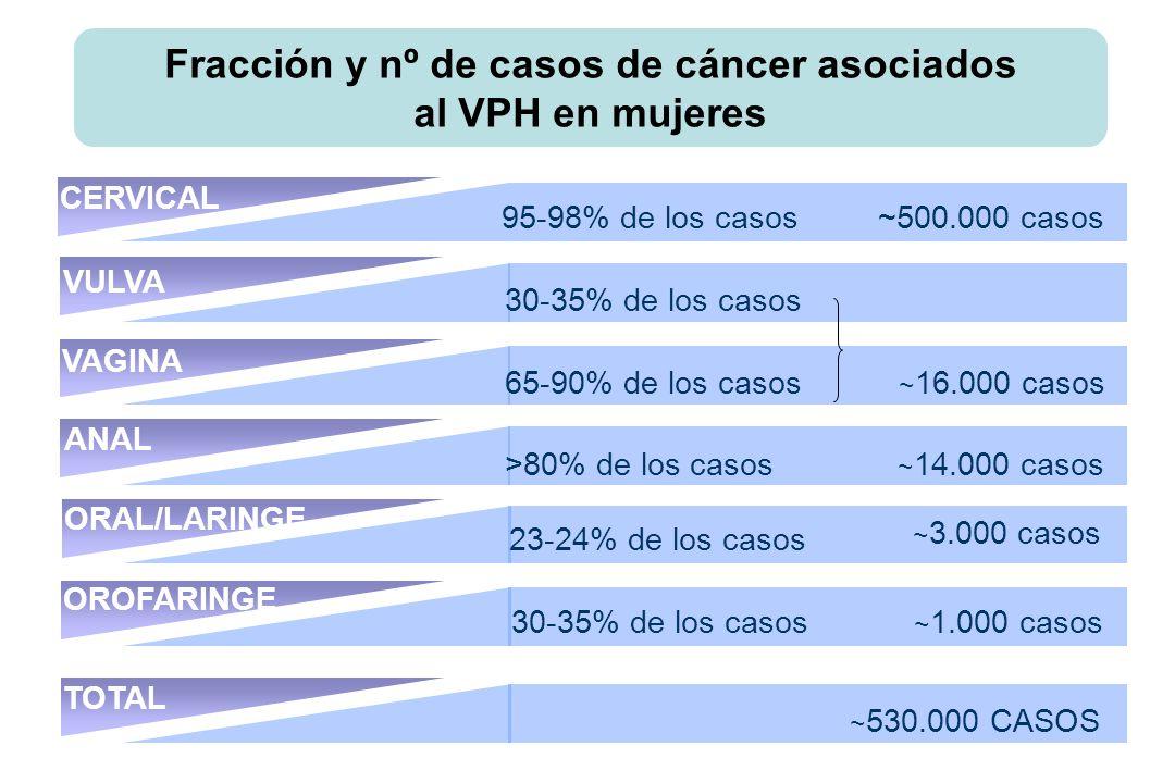 CERVICAL VAGINA OROFARINGE TOTAL ORAL/LARINGE 95-98% de los casos ~ 500.000 casos 30-35% de los casos 65-90% de los casos ~ 16.000 casos >80% de los casos ~ 14.000 casos 30-35% de los casos ~ 1.000 casos ~ 530.000 CASOS 23-24% de los casos VULVA ANAL ~ 3.000 casos Fracción y nº de casos de cáncer asociados al VPH en mujeres
